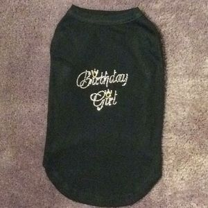 Other - Dog Size Large Tee Shirt.  Front BIRTHDAY GIRL!